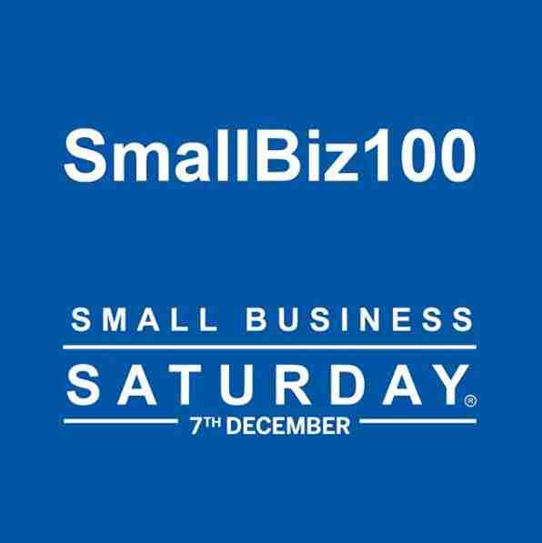 small biz 100